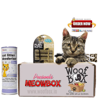 MeowBox-Indias-first-Box-of-Goodness-for-Cats-1-e1445746782229