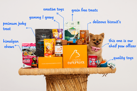 vegan dog subscription box