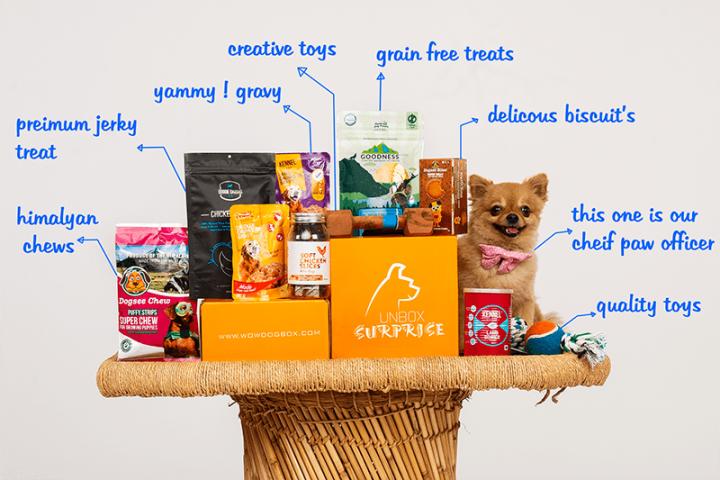 vegan dog subscription box